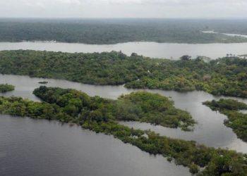 general floresta amazônica