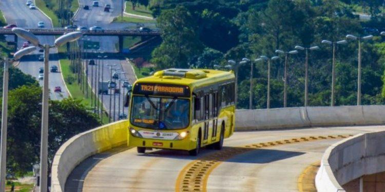 linhas de ônibus